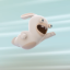 Running Rabbid