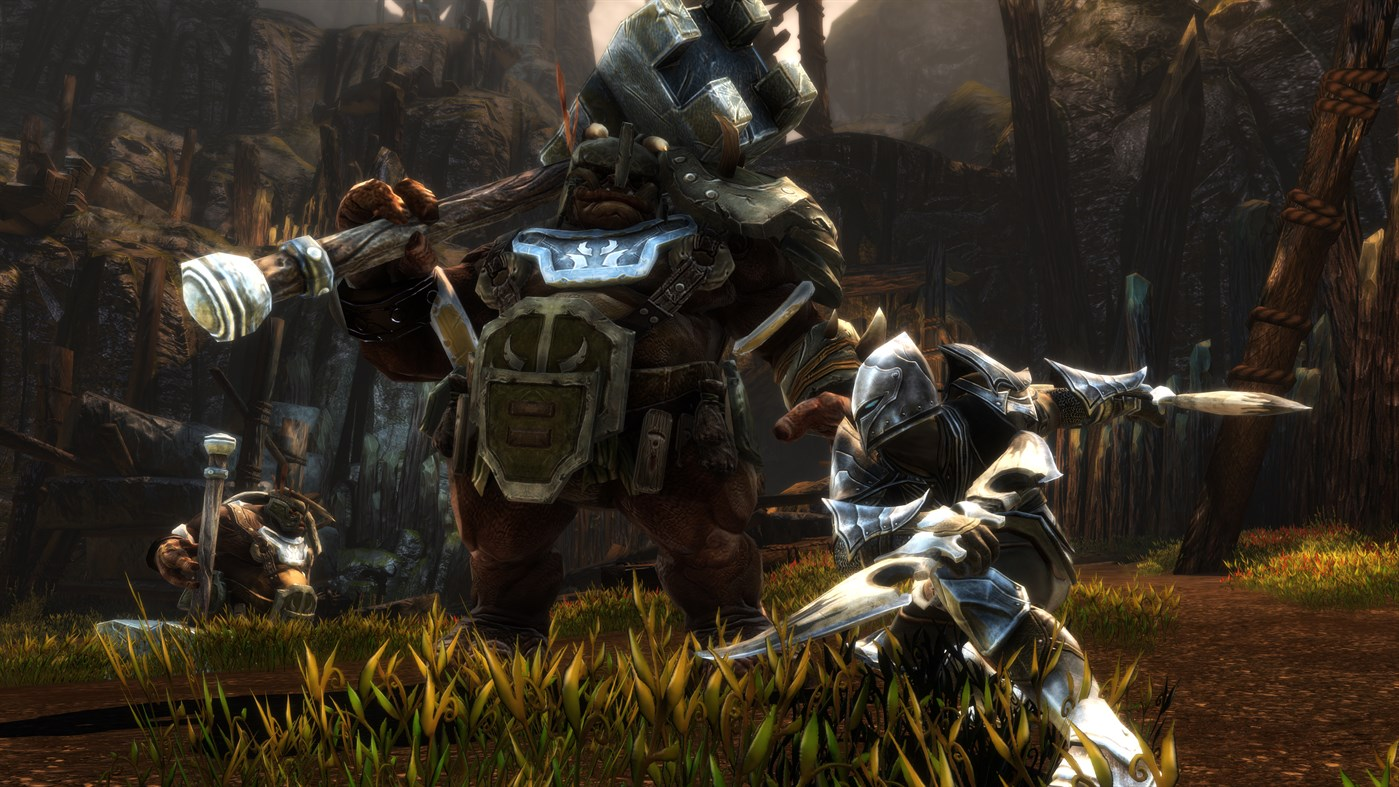 Kingdoms of Amalur: Re-Reckoning screenshot 28323