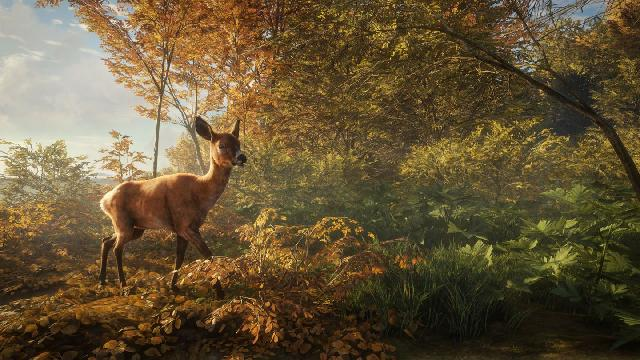 theHunter: Call of the Wild screenshot 12512