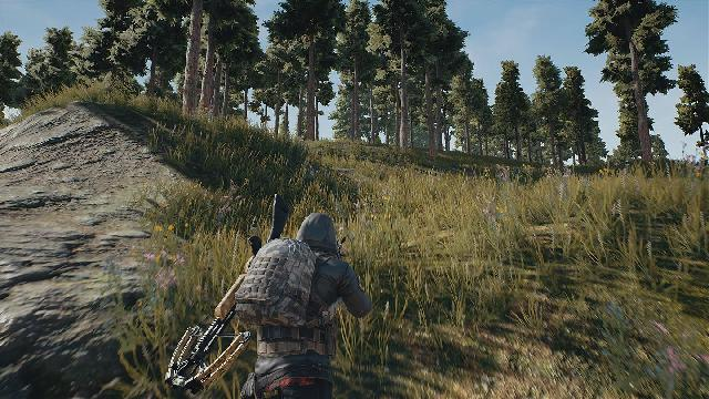 PlayerUnknown's Battlegrounds screenshot 13522