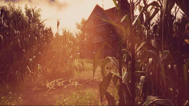 Maize screenshot 12476
