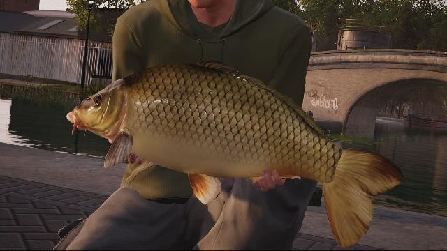 Fishing Sim World screenshot 16957