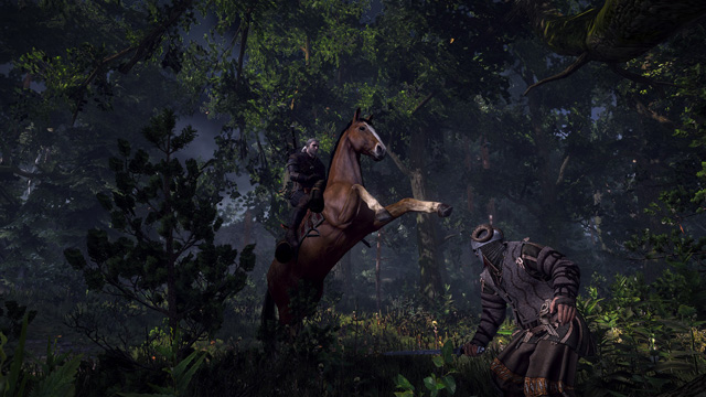The Witcher 3: Wild Hunt screenshot 183