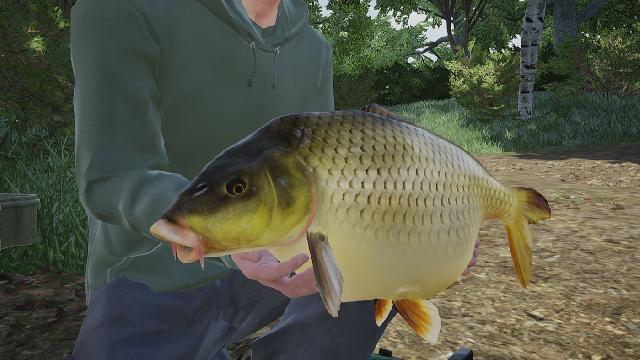 Fishing Sim World: Giant Carp Pack screenshot 26733