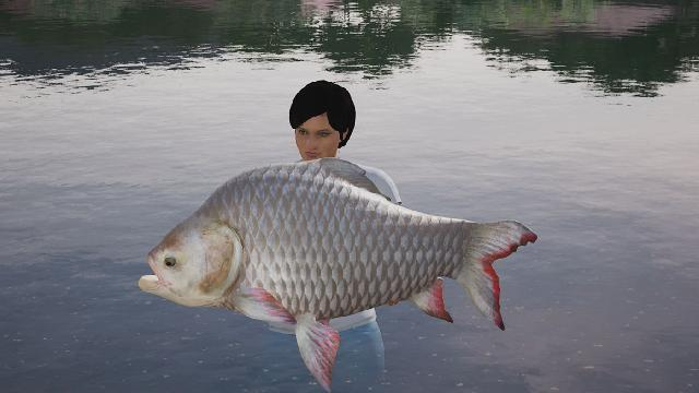 Fishing Sim World: Giant Carp Pack screenshot 26735