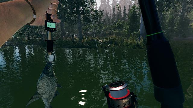 Ultimate Fishing Simulator 2 screenshot 25965