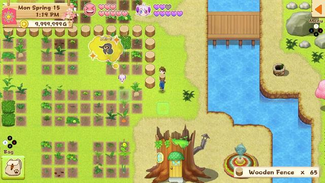 Harvest Moon: Light of Hope Special Edition Complete screenshot 30608
