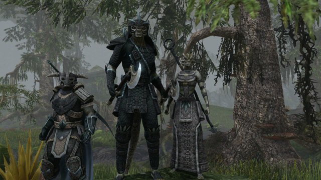 The Elder Scrolls Online screenshot 346