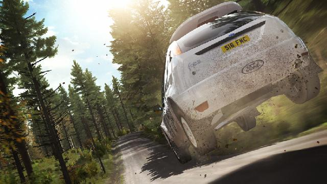 DiRT Rally screenshot 5541