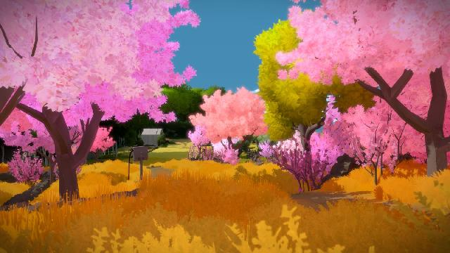 The Witness screenshot 8105