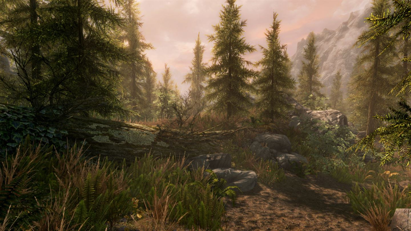 The Elder Scrolls V: Skyrim - Special Edition screenshot 8284