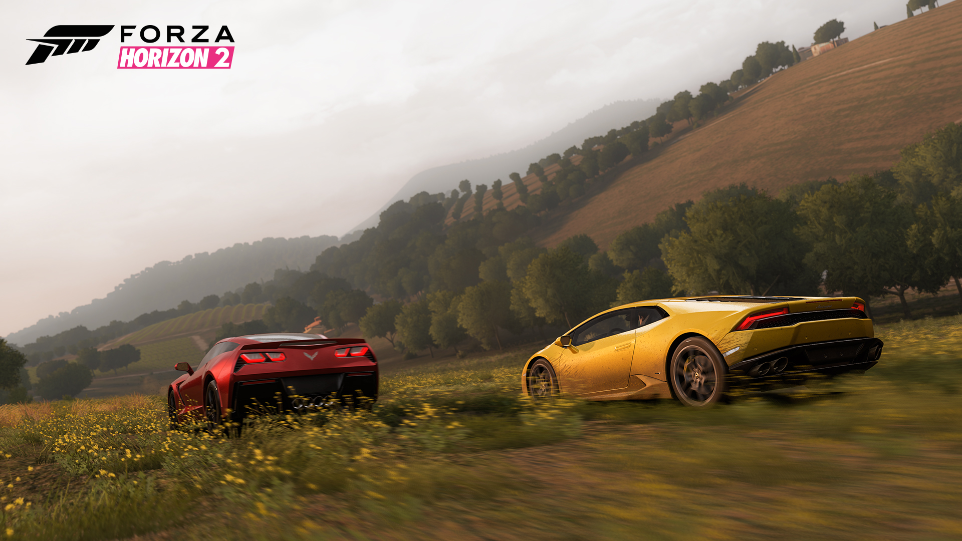 Forza Horizon 2 screenshot 1043