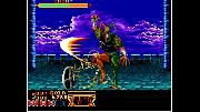 ACA NEOGEO: Crossed Swords Screenshot