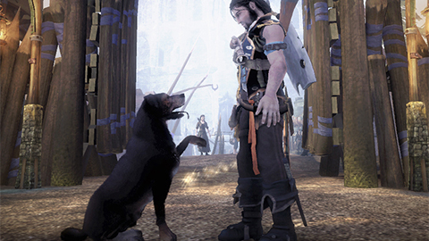 Looking Back at Fable 2