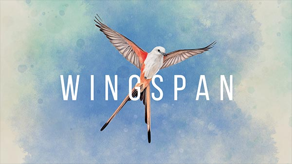 Award-winning strategy card game 'WINGSPAN' swoops onto Xbox on June 18; Pre-order now!
